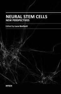 Cover-NSCs_-_NewPerspectives_new_copia