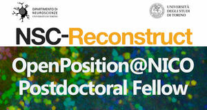 OpenPosition@NICO - prof. Buffo NSC-RECONSTRUCT